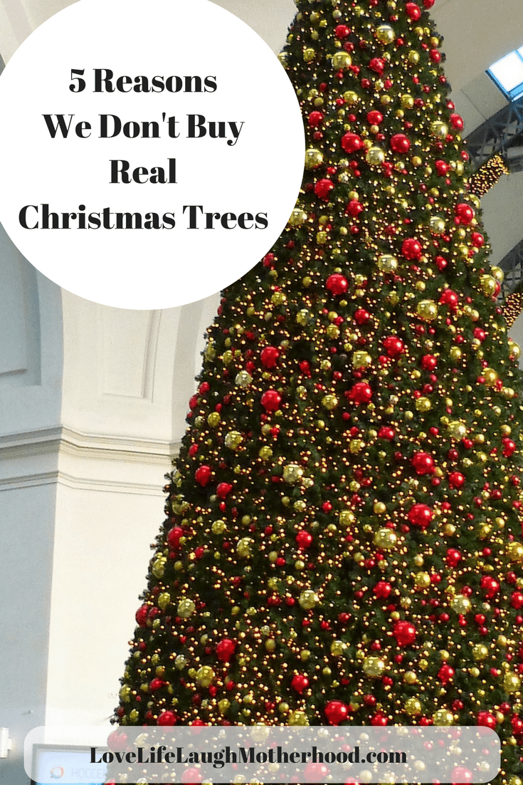 5 reasons we dont buy real christmas trees christmas christmastree artificialchristmastree - How Long Do Real Christmas Trees Last